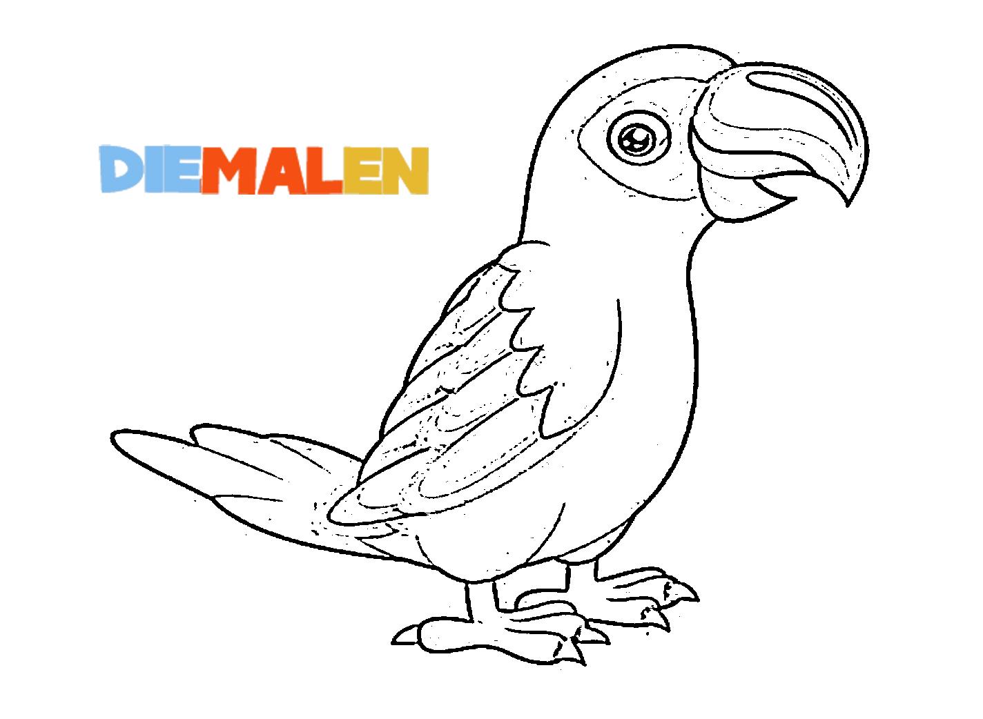 Ausmalbilder Papagei → DieMalen.com