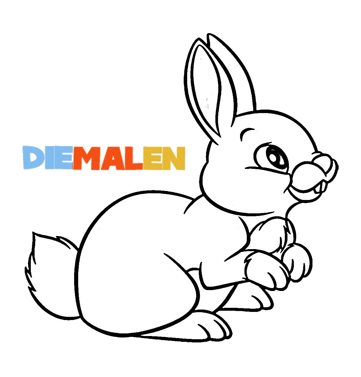 Ausmalbilder Hasen – Kaninchen → DieMalen.com