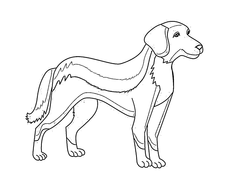 Bilder ausmalen hunde zum kostenlose Kostenlose Hunde